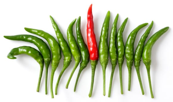 chili peppers: one red, a dozen green